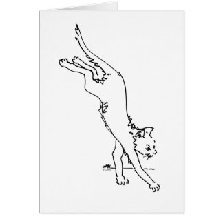 Cat Office Products.jpg Cards