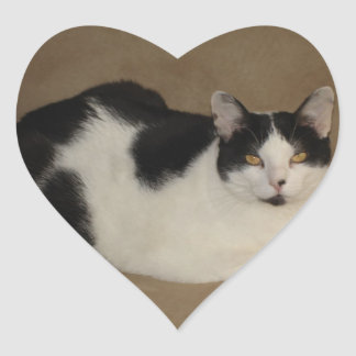 Cat On A Couch Heart Sticker