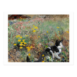 Cat on a Flowery Meadow, Bruno Liljefors Postcard
