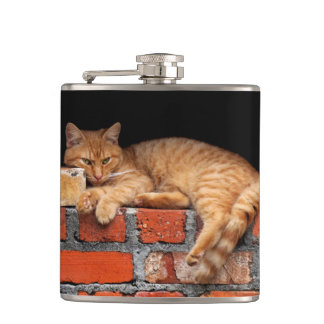 Cat on Brick Wall Hip Flask