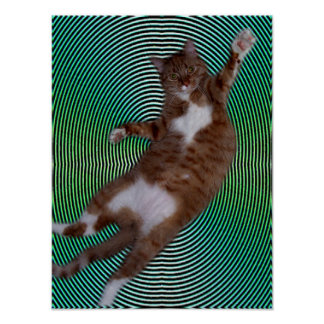 Cat on Hypnotic Background Poster