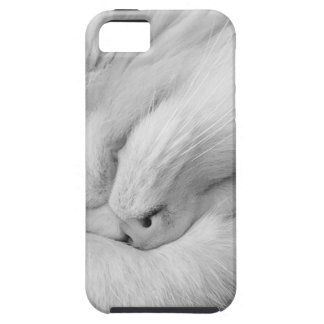 Cat on Phone No Text iPhone 5 Case