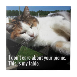 Cat On Picnic Table Tile