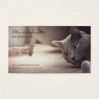 Cat, pet beautiful business card