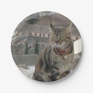 Cat Photo Paper Plates