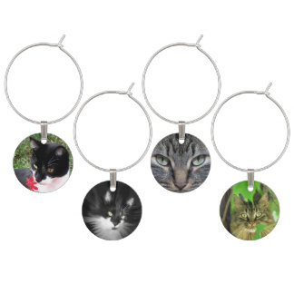 Cat Photograph Variety Wine Charm