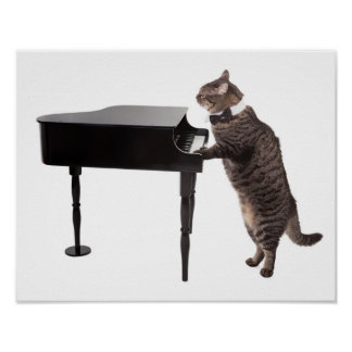 Cat Playing Piano Poster