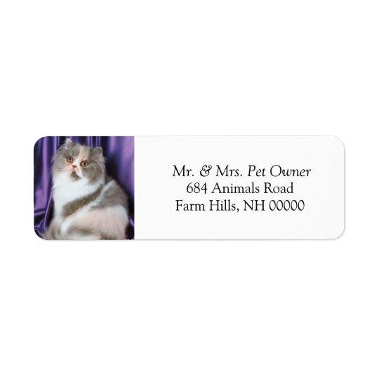 Cat Posing Return Address Labels Stickers