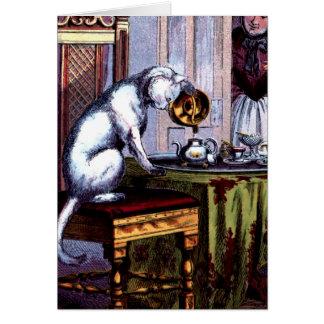 Cat Pouring Tea Card