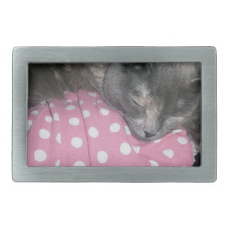 Cat products belt buckles
