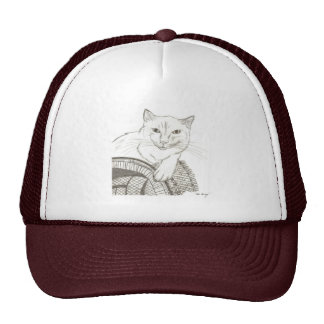 Cat Ragdoll Portrait Hat