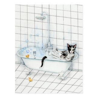 Cat reading newspaper in the bathtub postcard