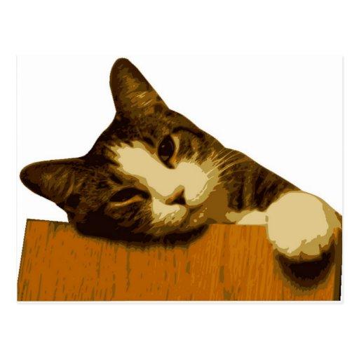 Cat Reclining Post Card