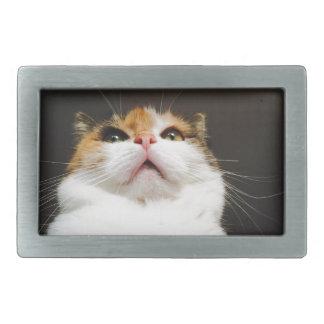 cat rectangular belt buckle