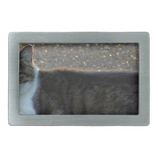 cat rectangular belt buckle