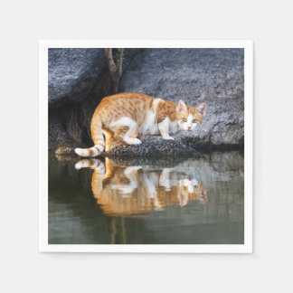 Cat Reflection in Pond Water Funny Kitten Photo // Paper Napkin