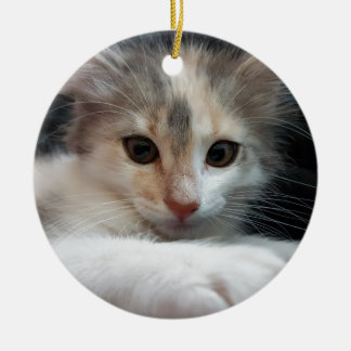 cat round ceramic decoration