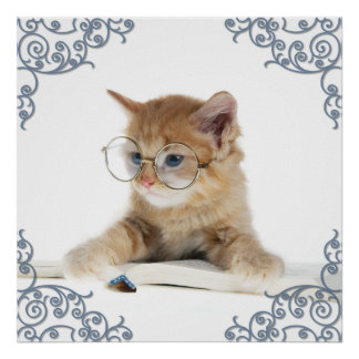 Cat Scholar Poster