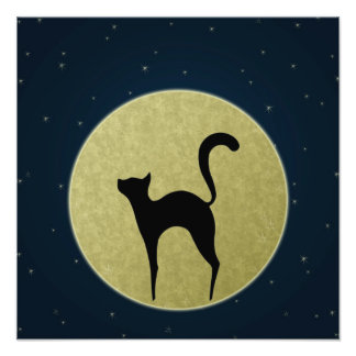 Cat silhouette and moon Photo print