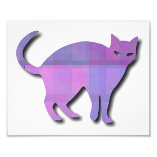 Cat Silhouette Photo