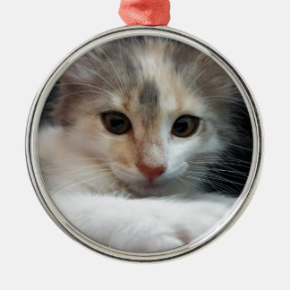 cat Silver-Colored round decoration