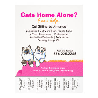 Cat Sitter Ad Ragdoll Pink Couch Tear Sheet
