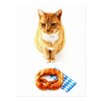 Cat sitting in front OF Octoberfest pretzel Postcard
