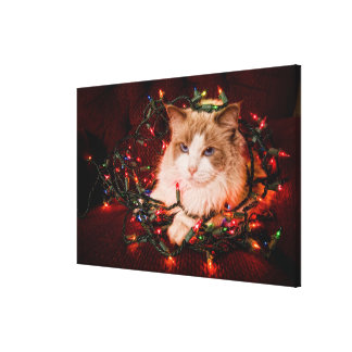 Cat sitting on a ball of Christmas lights. Gallery Wrapped Canvas