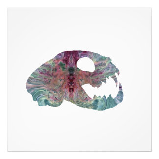 cat skull art photo print