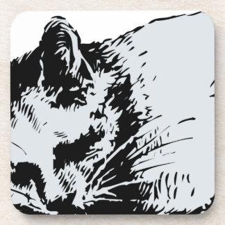 cat sleep drink coasters
