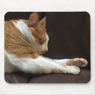 Cat sleeping on sofa mouse pad