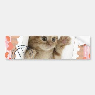 Cat stamp bumper sticker