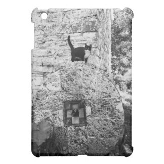 Cat standing on old stone wheel iPad mini case