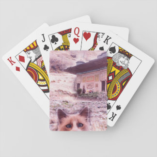 Cat Stare Classic Playing Cards