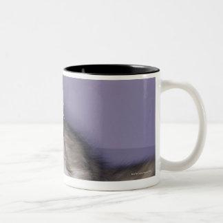 Cat stepping into high heel coffee mug
