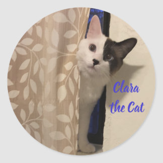Cat Stickers - Share Your Feline Friend