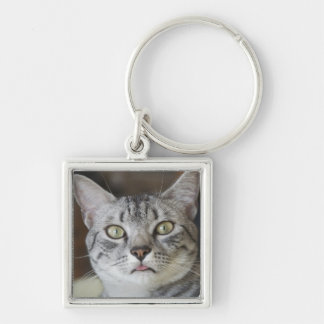 Cat Sticking out tongue key chain