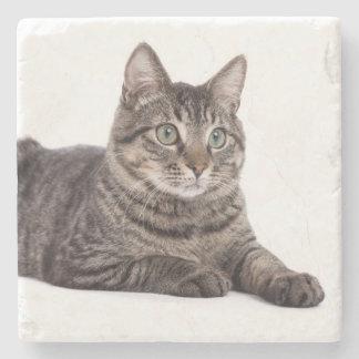 Cat Stone Coaster