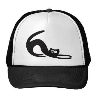 Cat Stretch Black Stunned Eyes Hat