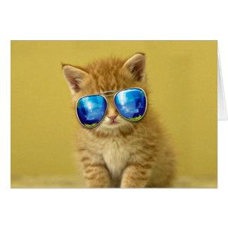 Cat sunglasses - cat love - pet - cute cats card