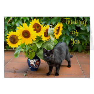 Cat Sympathy with Sunflowers Card