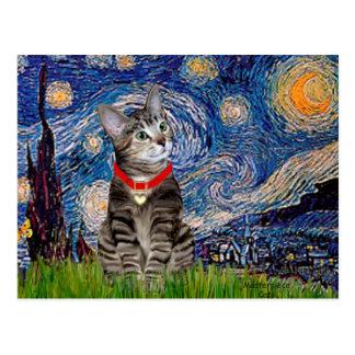CAT (Tabby2) - Starry Night Postcard