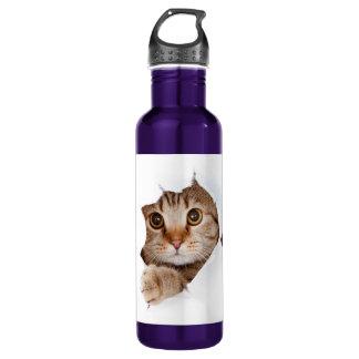Cat tearing paper - looking cat - cute cats - pet 710 ml water bottle