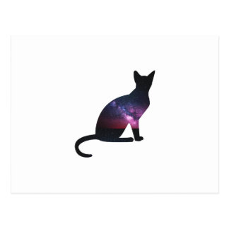 Cat that shows the galaxy and the big universe postcard