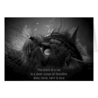 cat thoughts haiku card