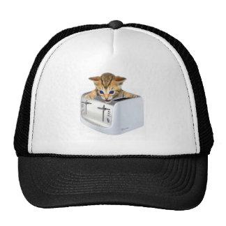 Cat Toaster Mesh Hat