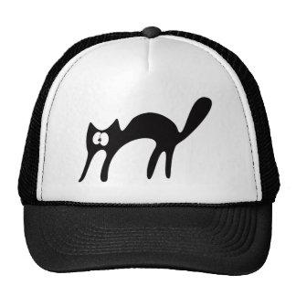 Cat Walking About Black Huhh Eyes Hat