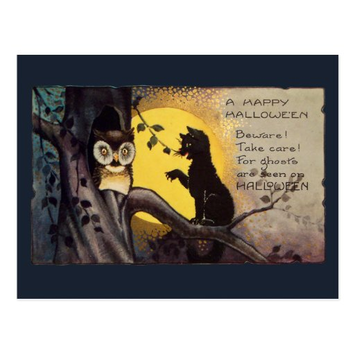 Cat Warning Owl Vintage  Halloween Postcard