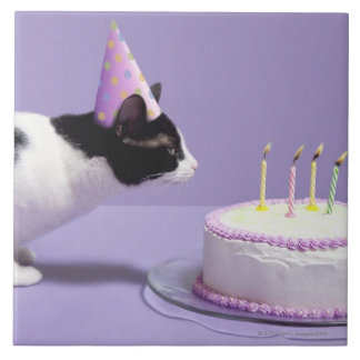 Cat wearing birthday hat blowing out candles ceramic tile