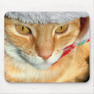 Cat wearing furry hat mouse pad